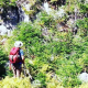 Connaissez-vous le sentier 1 du Mont Gosford ?