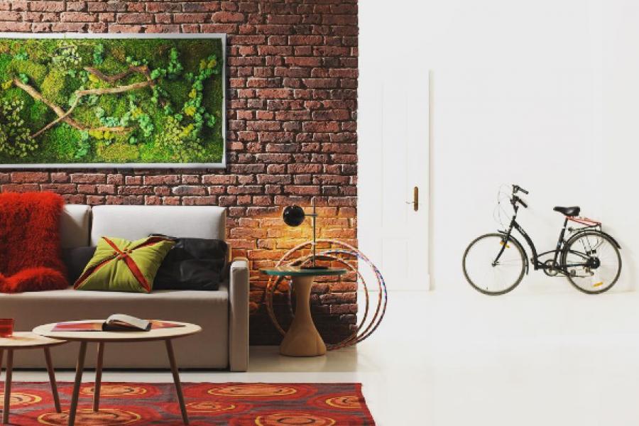 Folia Design – Les bienfaits des plantes !