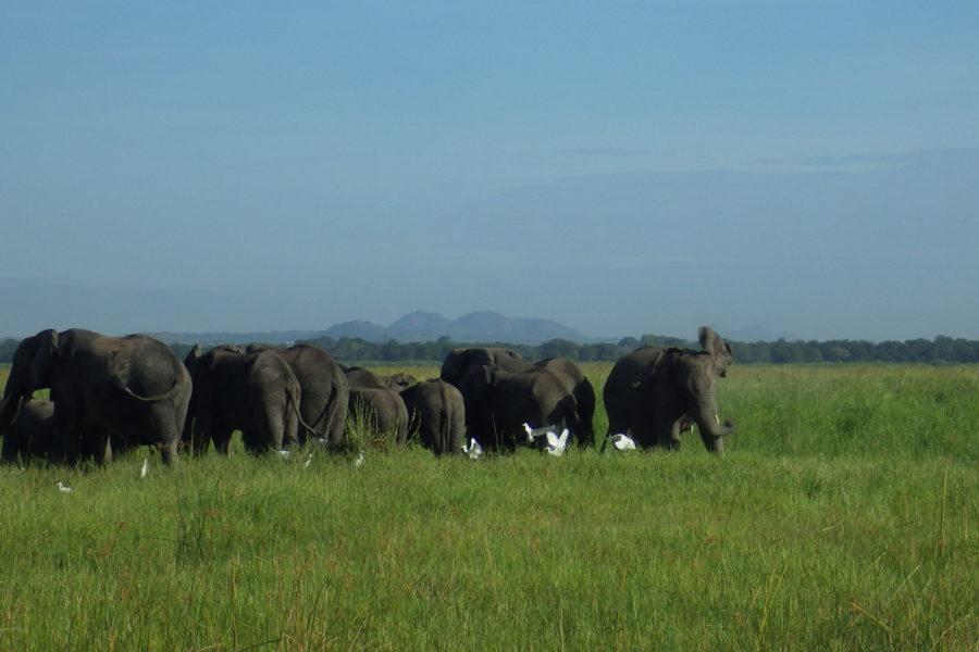 Voyage sac-à-dos: Le Malawi en Afrique