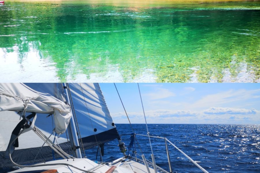 Visiter et observer la Gaspésie autrement !