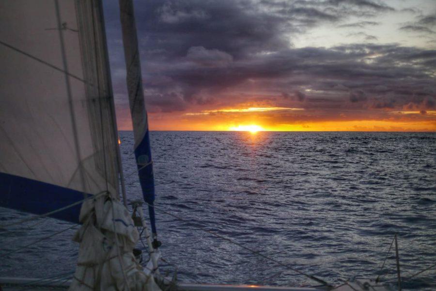 Vie à bord : La traversée du grand bleu Pacifique (4e chapitre)