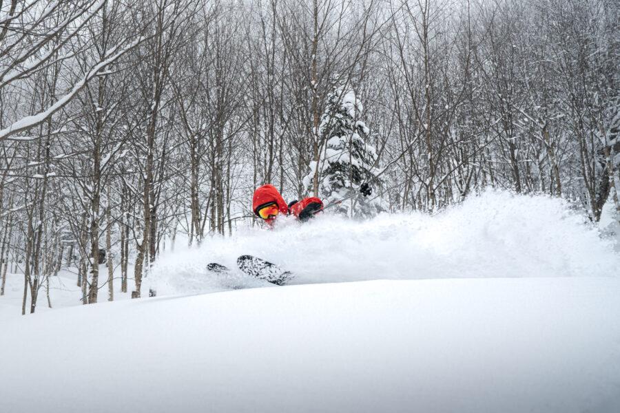Parc des Appalaches – Nouveautés dans le secteur de Ski Hors-Piste !